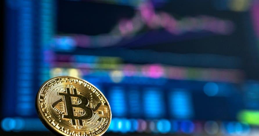 加密货币赌博初学者指南
